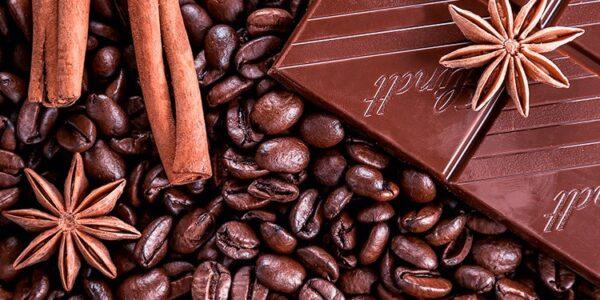 Čokoláda a theobromin – parťák kofeinu pro den plný energie